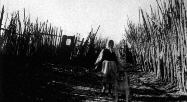 【靈異照片】詭異女子造成民俗學家失蹤?查理.諾南的最後一張照片