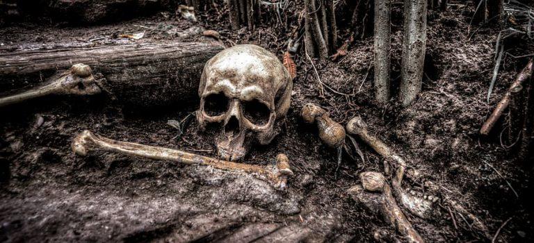 【詭異事件】燒盡獨裁者的一把火,卻燒出了臺大學生盜墓之罪