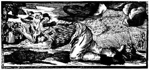 【怪物目擊】狼人好可怕?暴走村民跟恐龍法官比狼人更可怕!甘迪隆狼人事件