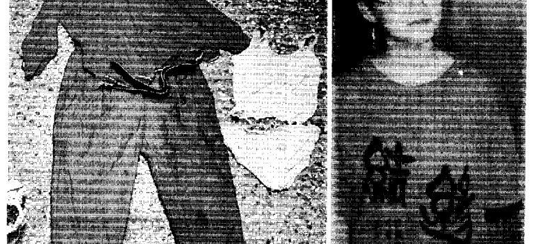 【離奇命案】黃佩芬命案:在鬧區花店消失的少女,一年前早已命喪木柵山區?